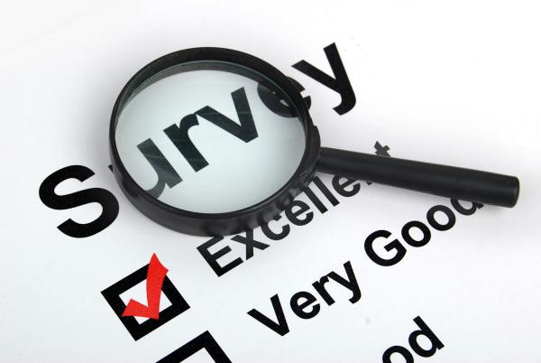 International Paid Surveys